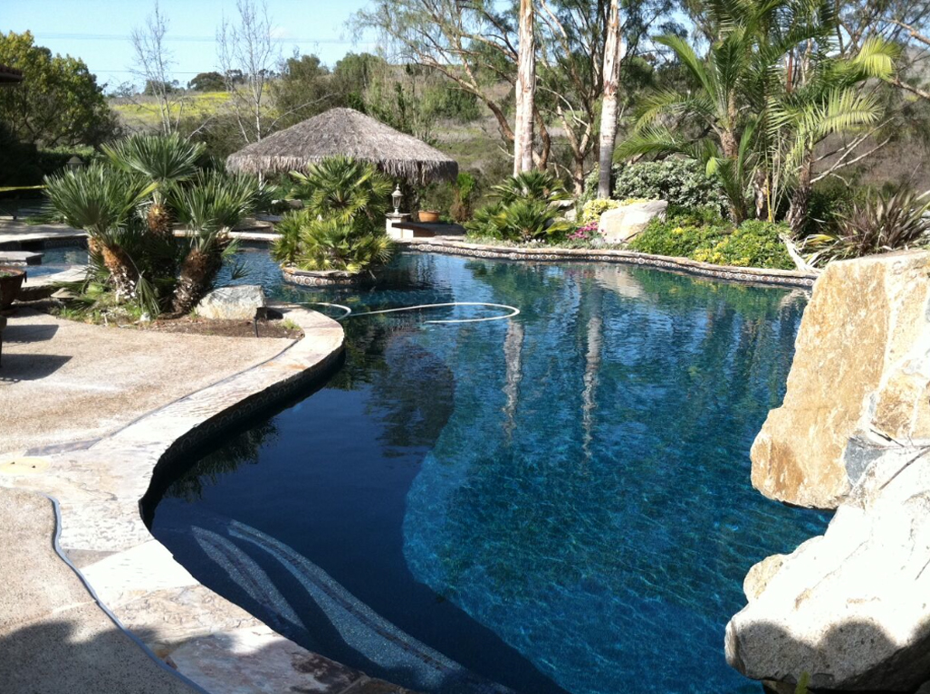 Designer Black Opal pool and palapa